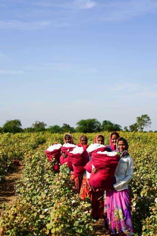 supply chain farmers