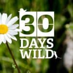 30 Days Wild: Do something wild every day for a month!