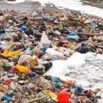 International Plastic Bag Free Day: Say no to plastic bags